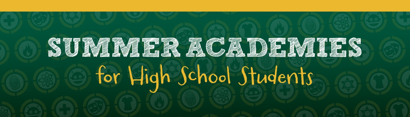 Image of Summer Academies banner