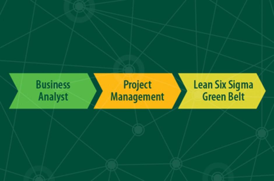 Lean Six Sigma Green Belt Certificate Program - College of