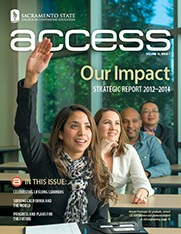 Access Strategic report cover